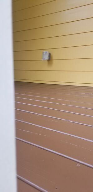 Deck Painting in Charleston, SC (1)